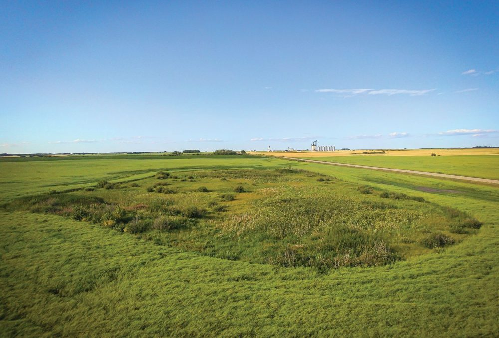Revealing transformation: funding from The Coca-Cola Foundation helped restore this prairie wetland near Strathclair, Manitoba, to its full potential.