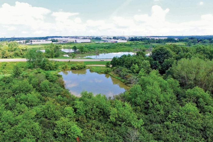 In 2018, Woodstock city council voted unanimously to support the renewal of Brick Ponds, and one of the largest urban wetlands in Canada began its journey from brownfield to gathering place.