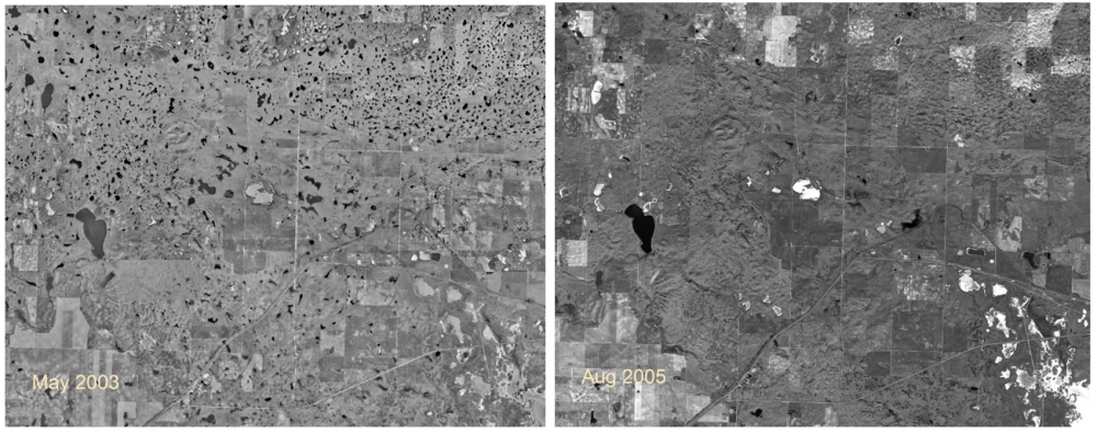 These images from the RM of Morse in the Central Missouri Coteau in Saskatchewan demonstrate dramatic wetland variability over wet (2003, left) and dry (2005, right) cycles in the Canadian prairies. The number of wetlands on the landscape can vary greatly, even over relatively short time frames.