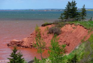 Rising Up: Saving Prince Edward Island from the threat of sea-level rise