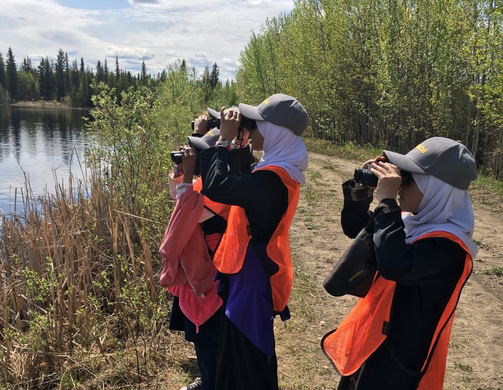 Enthusiastic young students explore a local wetland with DUC.