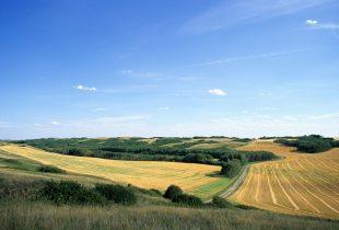 Revolving Land Conservation Program