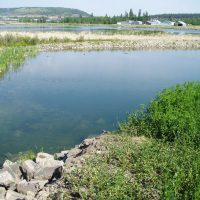 Filtering wastewater