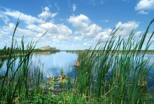 Wetlands shown to reduce signs of aging