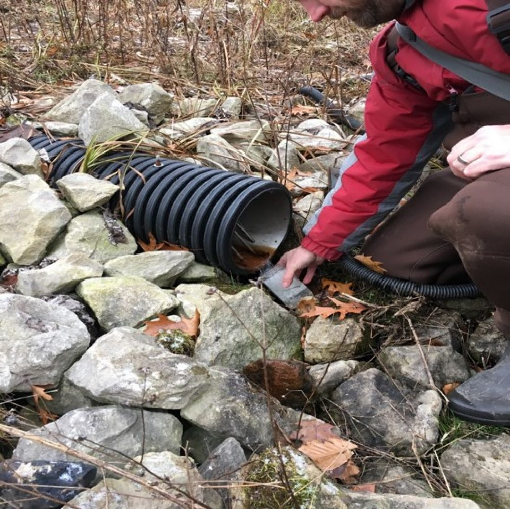 Research site monitoring was conducted by the St. Clair Region Conservation Authority.