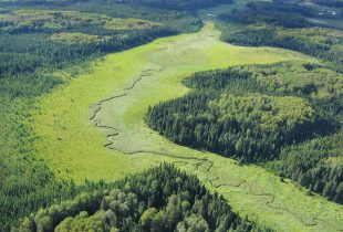 Ducks Unlimited Canada and Louisiana-Pacific Building Solutions sign landmark conservation agreement to support 6.2 million acres in Manitoba's boreal forest