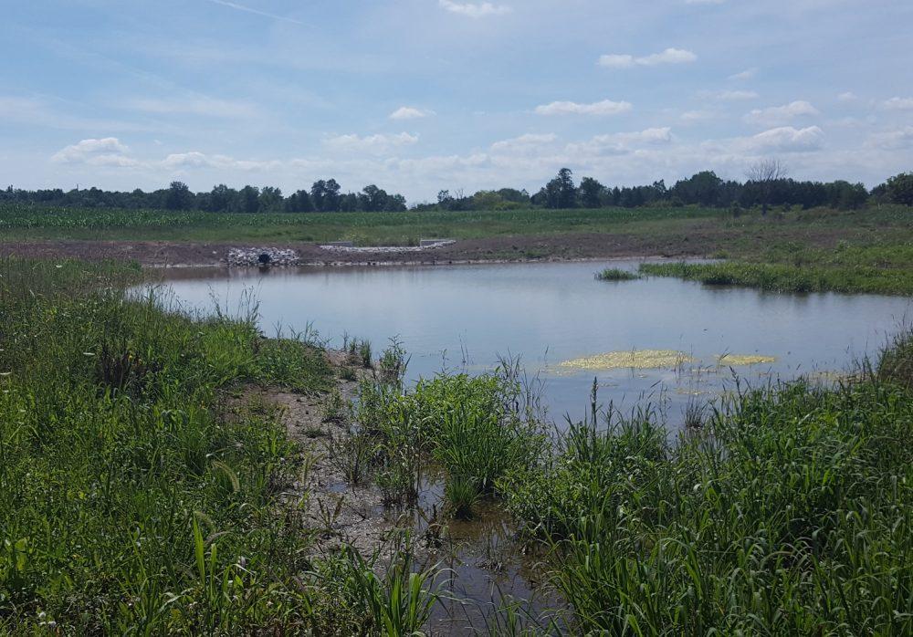 DUC builds rural wetlands