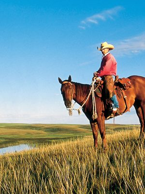 Resources for Landowners