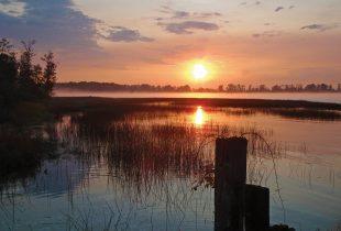 Major investment supports B.C.'s Fraser River Estuary