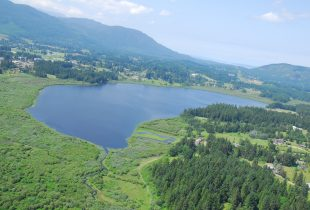 TimberWest Forest Corporation donates $25,000 to Somenos Marsh Wildlife Society for a viewing tower over Somenos Lake