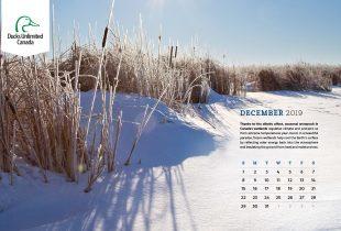 2019 Desktop Calendar Downloads