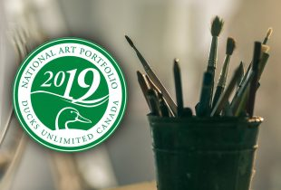 2019 National Art Portfolio