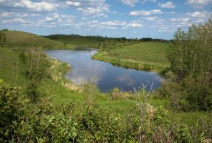 Fueling conservation on the Prairies