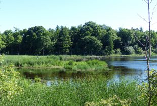 Ducks Unlimited Canada Salutes Four Decades of Conservation in Middlesex County