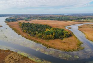 Wetland restoration at Clark Island will create new fish habitat connected to Lake Ontario
