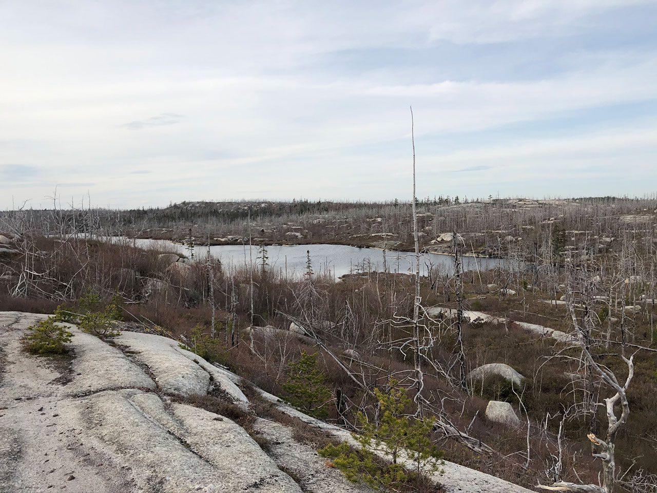 Flat Lake, Nova Scotia Spring 2020