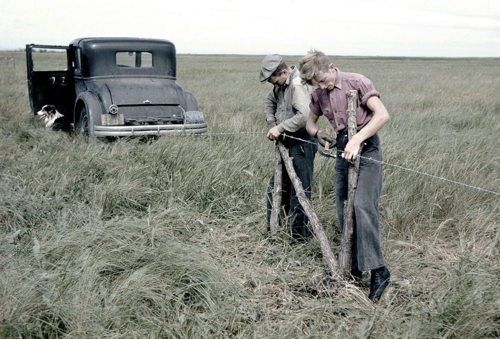 Workers erect fencing in the early 1940s at Big Grass Marsh, Manitoba: DUC's first-ever wetland conservation project.