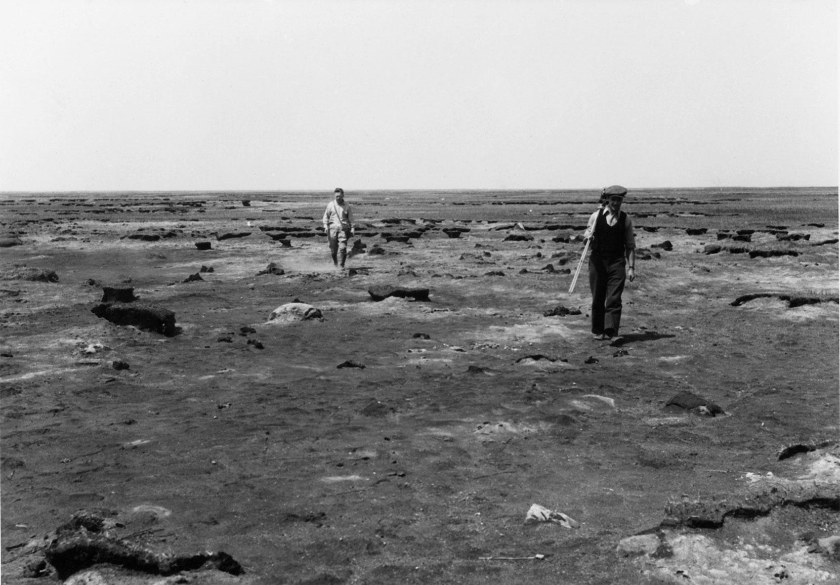 Le marais Big Grass a été le premier site des projets de Canards Illimités Canada, en 1938.