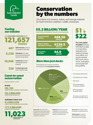 Conservation by the Numbers