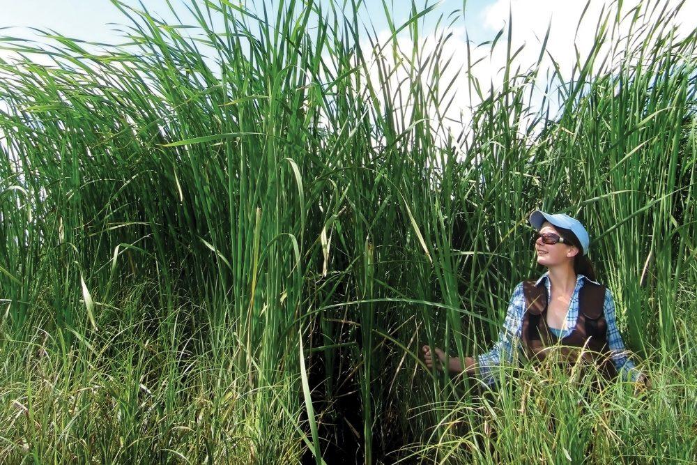 Lauren Bortolotti during her PhD fieldwork.