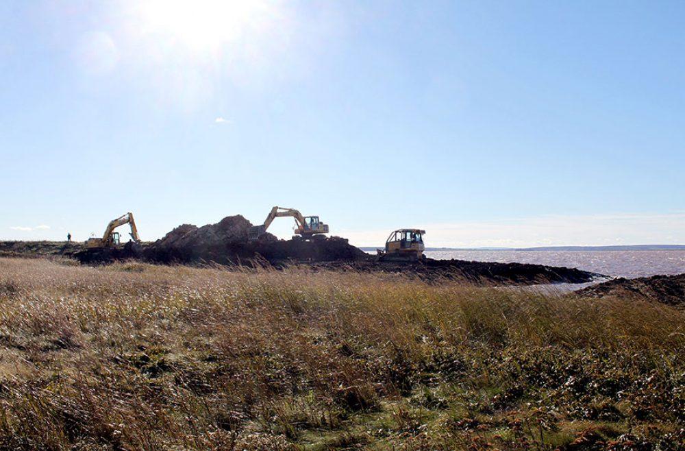 Heavy equipment breach dyke for salt marsh restoration