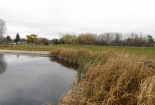 2016 Accomplishments from DUC's conservation community