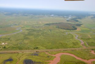 Conserving a working landscape in Tantramar