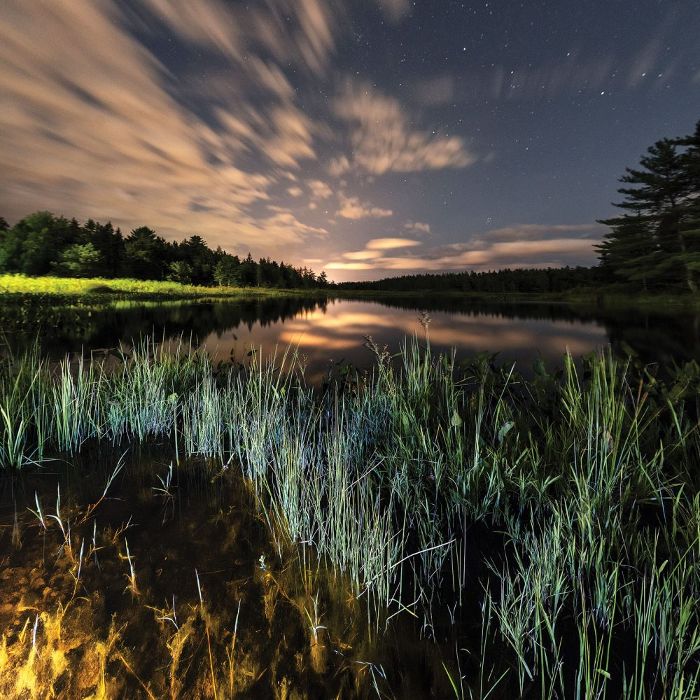A wetland in Kejimkujik National Park, Nova Scotia. Wetlands in this inland park provide habitat for species at risk like the Blanding's turtle. Designated by Parks Canada as a dark-sky preserve, stargazers can find rare respite here from the glare of artificial light to enjoy the reflection of the moon and stars in wetland waters.
