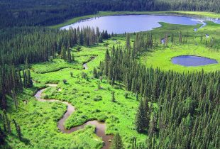 NWT residents link conservation to prosperity before heading to the polls