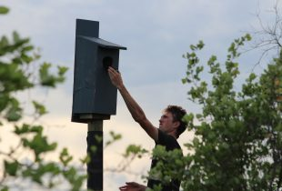 Oakbank teen earns Wetland Hero distinction with nest box project