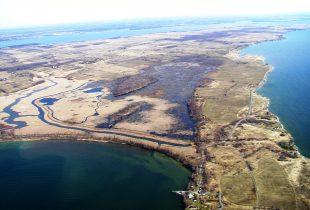 Helping habitat on Amherst Island