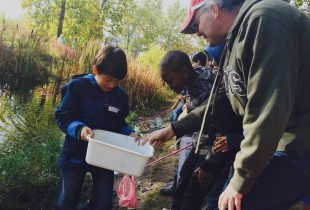 Wetland Discovery Days connect students with nature