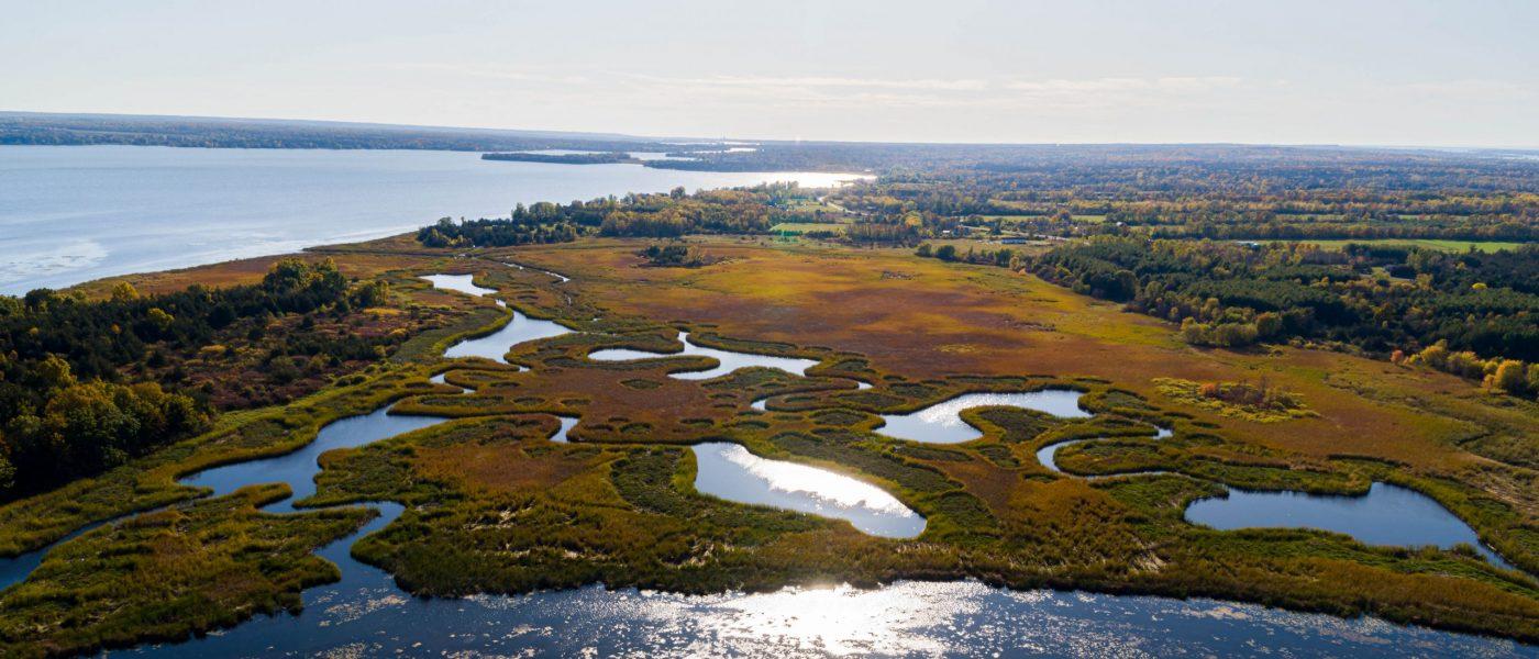 Coastal Habitat for Fish & Waterfowl