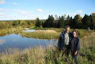 Small marsh with a big impact