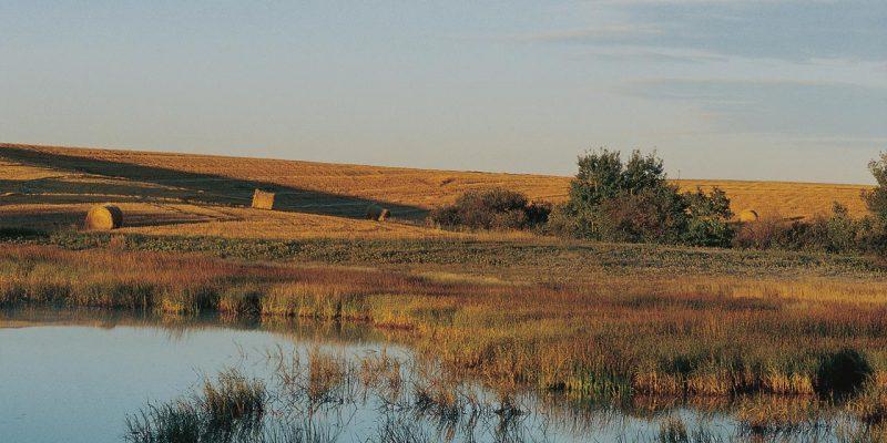 Prairie Pothole Region