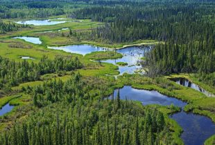Canadians want more conservation