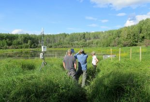 Ducks Unlimited Canada and USask partner to advance wetland and waterfowl conservation in Canada