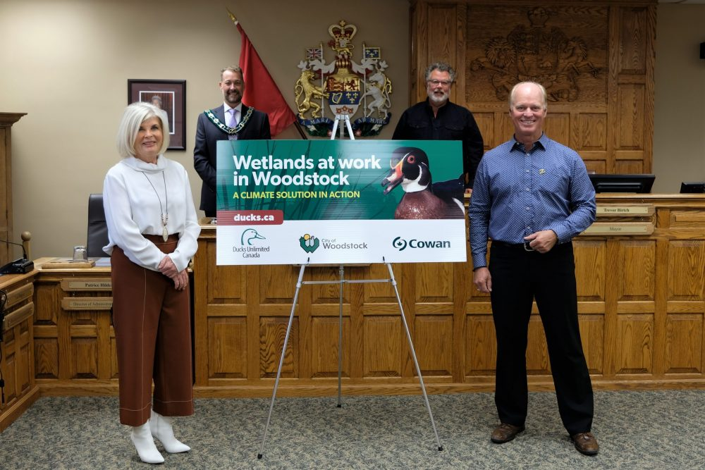 Woodstock Partners Create Community Habitat Project Beside Highway 401