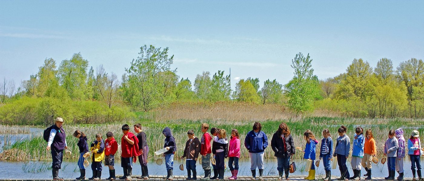 Students on a wetland field trip.