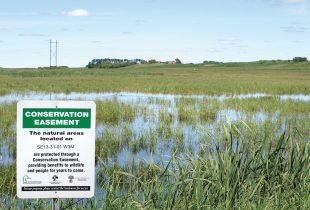 Conservation Easements