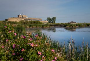 Say hello to the Harry J. Enns Wetland Discovery Centre