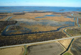 Ducks Unlimited Canada and Environment and Climate Change Canada Join Forces to Rebuild the Digue-aux-Aigrettes Marsh