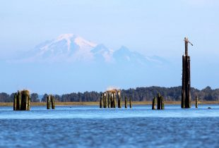 DUC in BC Canadian Navigable Waters Act Application