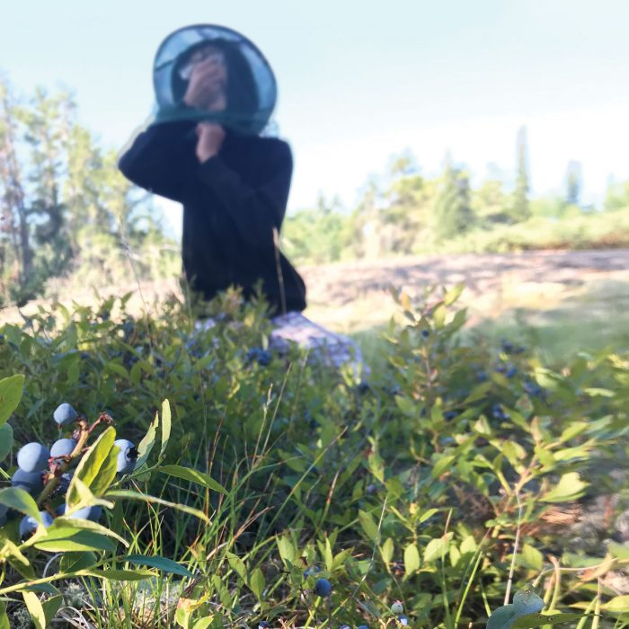 Carolyn Kosheluk's son, Seth, eats a handful of blueberries under his mosquito-net hat.