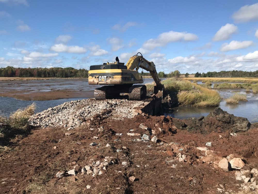 Construction began on Fullerton's Marsh in fall 2020 with the removal of the original water control structure.