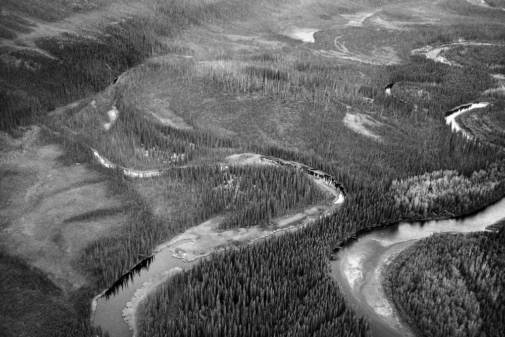 Canada's boreal forest spans 1.38 billion acres and covers 58% of the country's landmass, holding 85% of Canada's remaining wetlands.