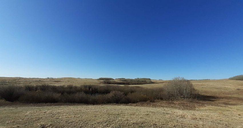 Saskatchewan farm family's deep roots anchor conservation ethic