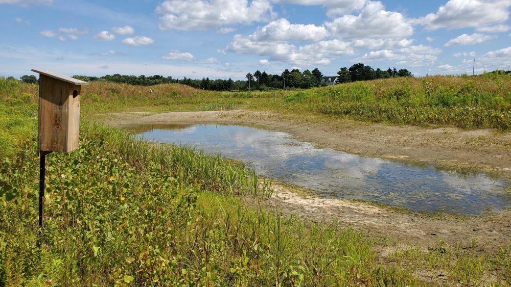 Generous landowners allow DUC to conduct research at small wetlands on private property.