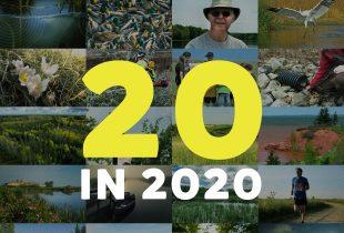DUC's Top 20 in 2020