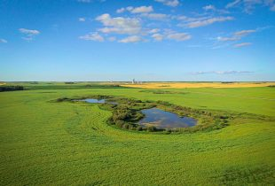 Manitoba Prairie Wetland Classification Guide